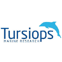 tursiops-01-01